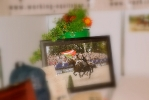 Messestand Wels 2015