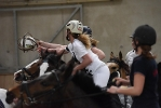 WE vs HB 2015 Zuckermantelhof - Sonntag - Horseball
