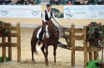 Working Equitation WM 2014 Trail